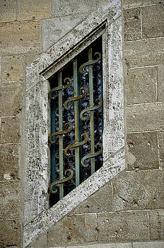 Windows  by Zoia  Luecht