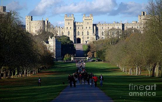 Windsor Castle view from the Great Park by Andre Correa