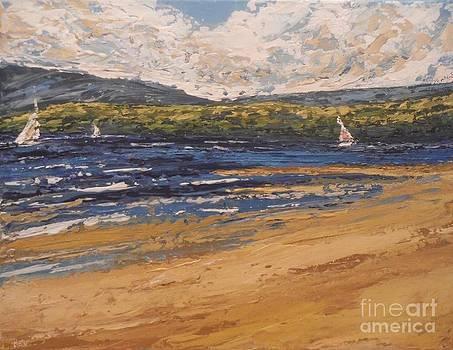 Windswept by Beverly Belanger