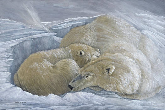 WINDSWEPT - Polar Bears by Patricia Mansell