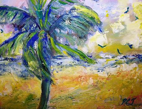 Patricia Taylor - Windy Beach with Birds