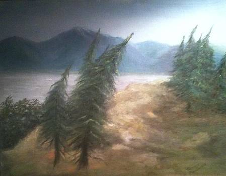 Windy Day at McHugh Creek by Terry  Phillips