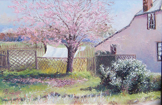 Jan Matson - Windy Washing Day