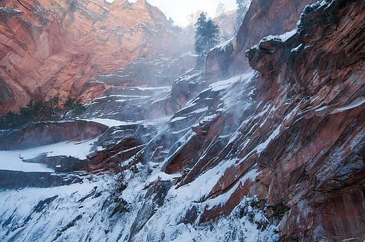 Tam Ryan - West Fork Windy Winter