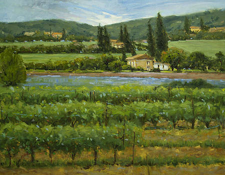 Wine and Lavender Provence by Judy Crowe