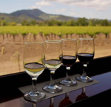 Wine Train Tasting by Michele Myers