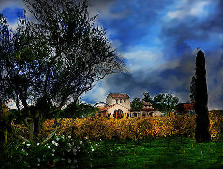 Winery Castle by Cary Shapiro