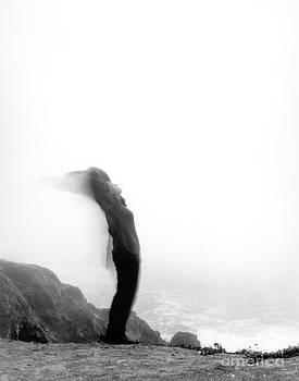 Kathi Shotwell - Winged