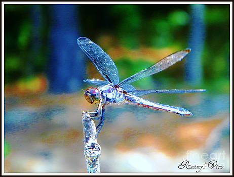 Winged Pose by Lorraine Heath