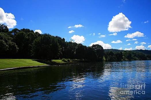 Wingham Lake Reflection by Sarah Sutherland