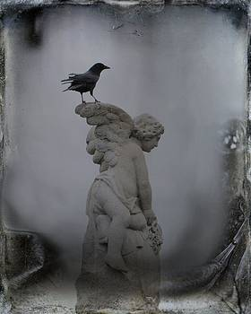 Gothicrow Images - Wings Of An Angel