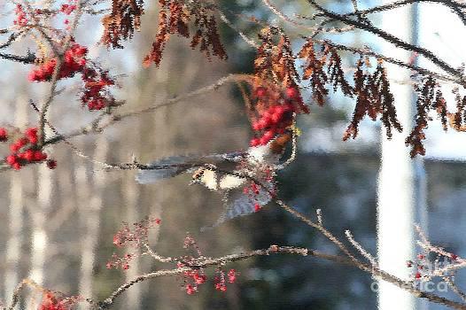 Wings open by Mika Uusitalo