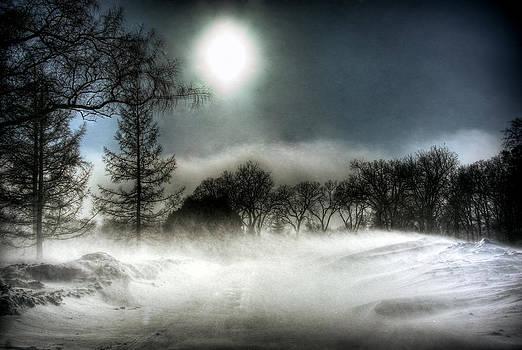 Bryan Scott - Winnipeg Winter Storm