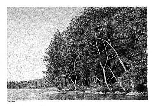 Winnipesaukee Shoreline by Scott Woyak