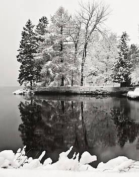 Winter-1 by Suzanne Blais