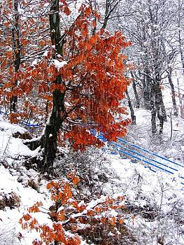 Winter 6 by Vassilis Tagoudis