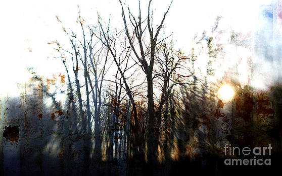 Winter Abstract by Mary Underwood