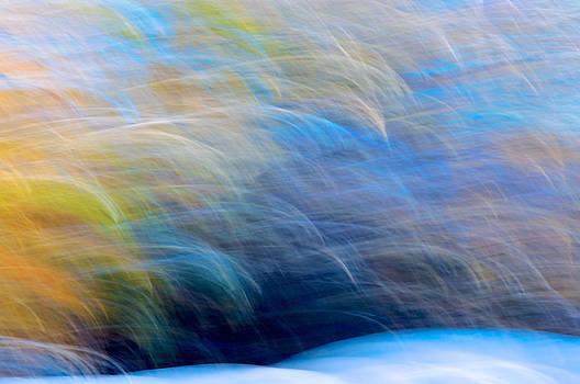 Winter Abstract by Sandra Silva