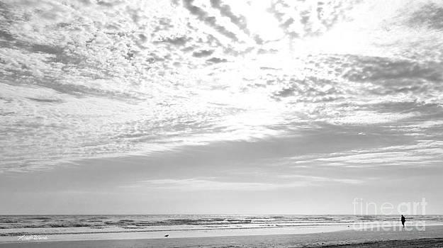 Michelle Wiarda-Constantine - Winter Afternoon St Augustine Anastasia Island Florida