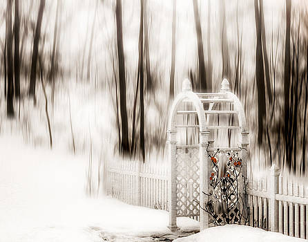 Winter Arbor by David Thurau