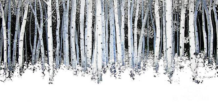 Winter Aspens  by Michael Swanson