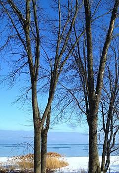 Winter at Lake Huron by Rhonda Humphreys