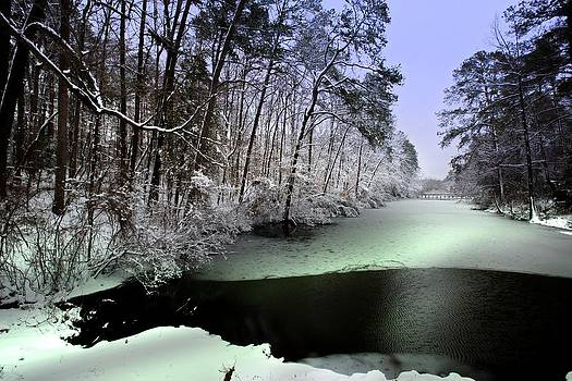 Regina  Williams  - Winter at Mariner