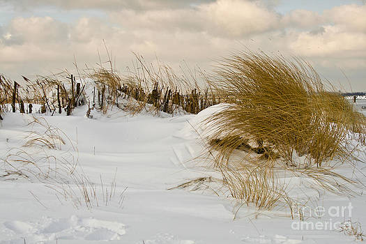 Heiko Koehrer-Wagner - Winter at the Beach 3