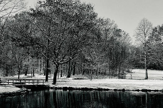 Winter at the Lake II by Jeff Picoult