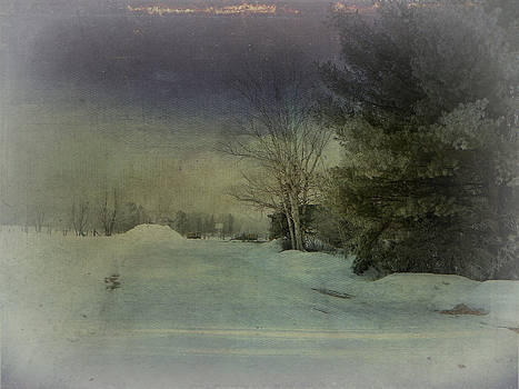 Winter Atmosphere  by Dianne  Lacourciere