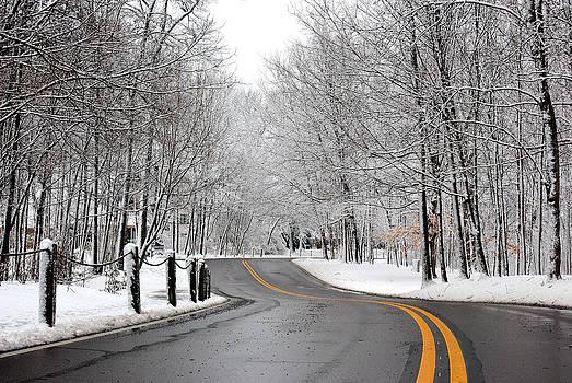 Winter Backroad by Amanda Lomonaco