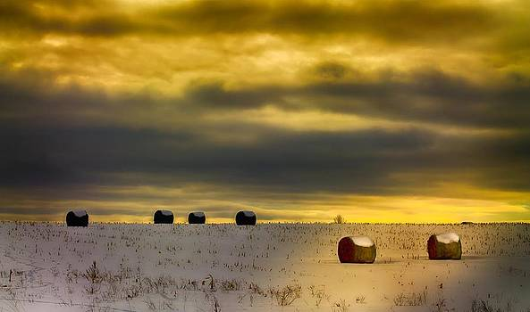 Melinda Martin - Winter Bales