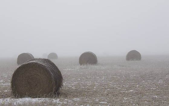 Winter Bales  by Sarah Boyd