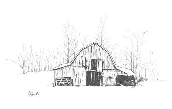 Winter Barn by Carol Neal
