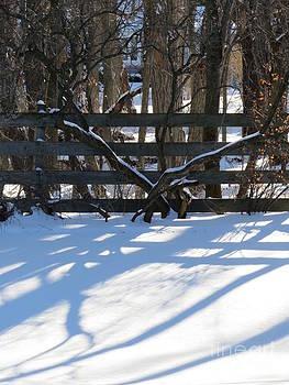 Winter Below Zero 1 by Judy Via-Wolff