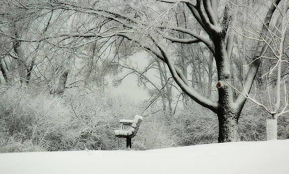 Rosanne Jordan - Winter Bench