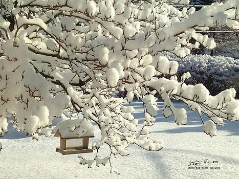 Winter Bird Feeder by Steph Maxson