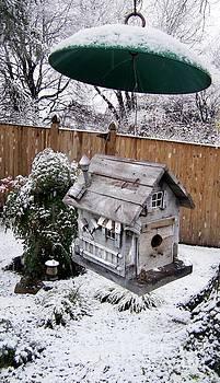 Winter Birdhouse by Iris Posner