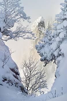 Winter by Bjoern Kindler