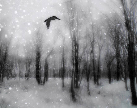 Gothicrow Images - Winter Bliss