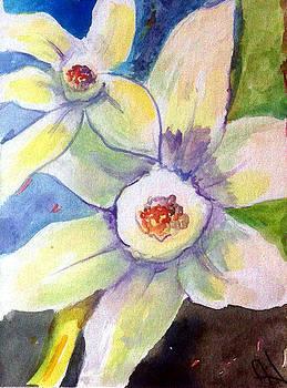 Patricia Lazaro - Winter blossoms