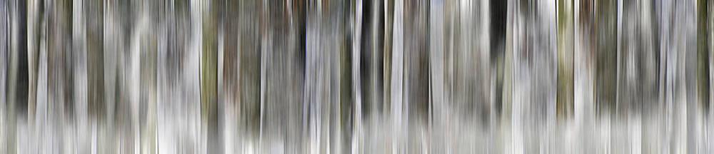Winter Rhythm by AugenWerk Susann Serfezi
