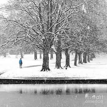 Winter Blues by Karin Ubeleis-Jones