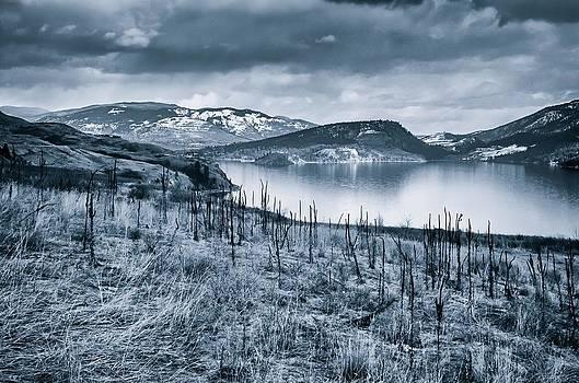 Winter Blues by Rod Sterling