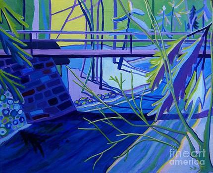 Vesper Bridge by Debra Bretton Robinson