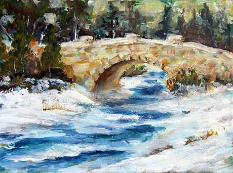 Winter Bridge by Eric Cobb