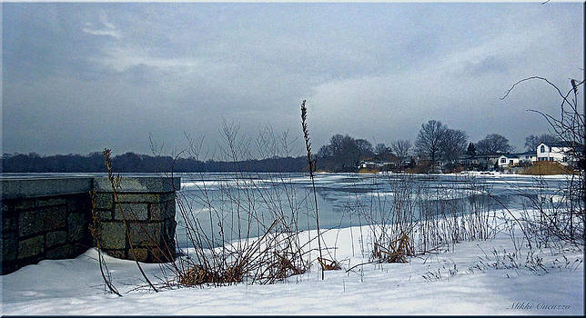 Winter by the lake by Mikki Cucuzzo
