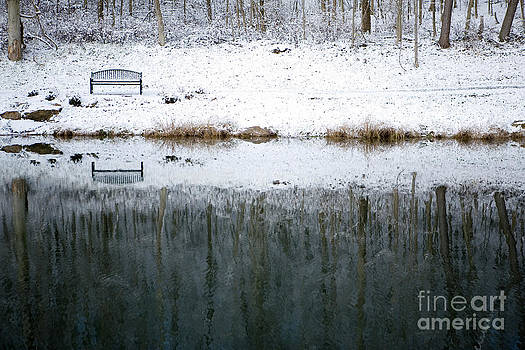 Winter By The Lake by Sharon Dominick