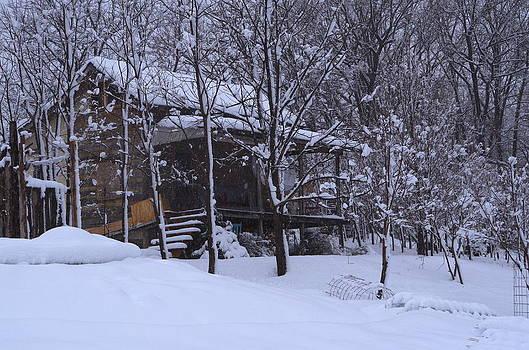 Winter Cabin by Martin Bellmann