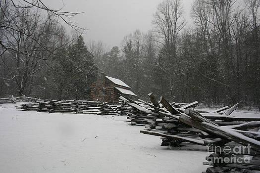 Winter Cabin by Michael Creamer